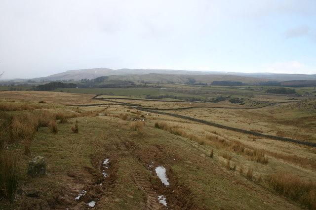 Stainmore Landscape