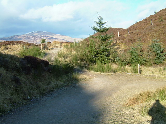 Viewpoint at Junction of paths