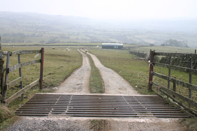 Cattle Grid and Track to Cragg House, Stainmore