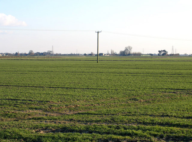 View from Tilebarn Lane, Swineshead, Lincs