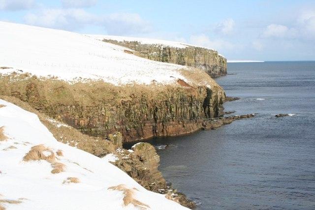 Sandstone cliffs, East Holm, Orkney