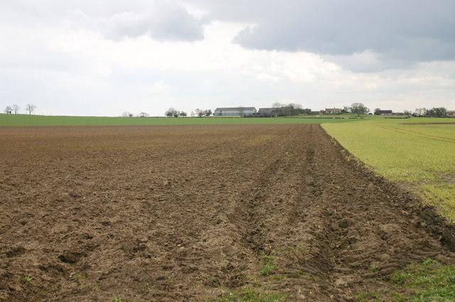 Farmland at Hutton Sessay