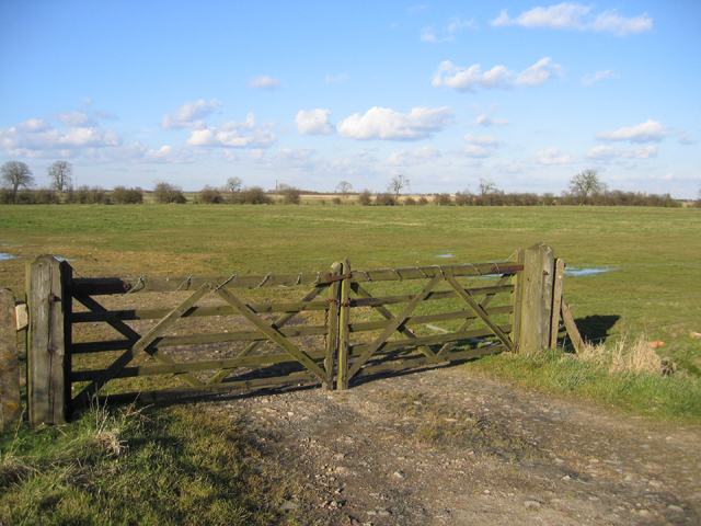 View from the Boardsides towards Algarkirk Fen, Lincs