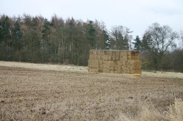 Haystack, Low Wood