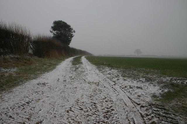 Lane near Cold Harbour Farm