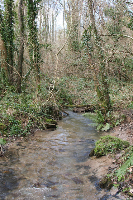 Wiveliscombe Without: stream at Combe Bottom