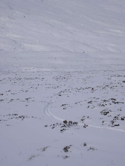 Ski tracks below Carn Bhac