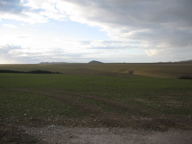 Wiltshire downland