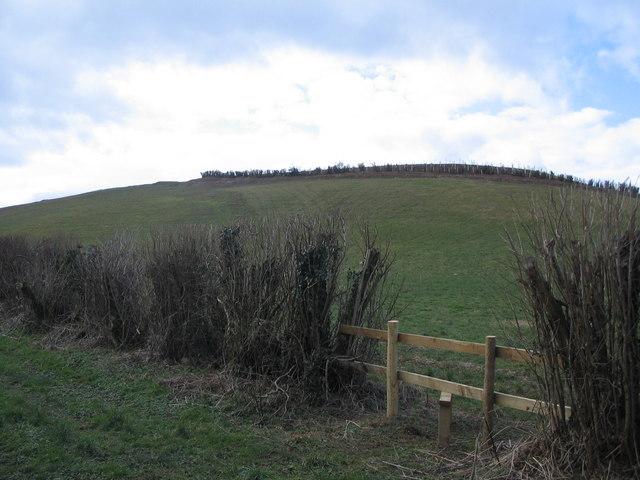 A new hill!