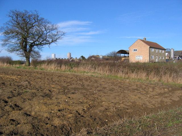 Beck Farm