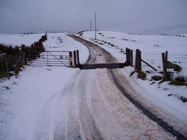 Cattle Grid  at Cadair Benllyn