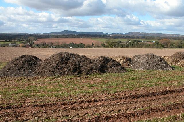 Muck bury, near Boreley House