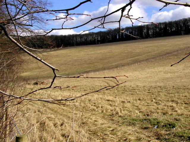 Chalkland Hills