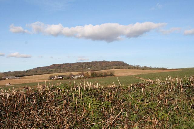 Payhembury: north east to Hembury fort