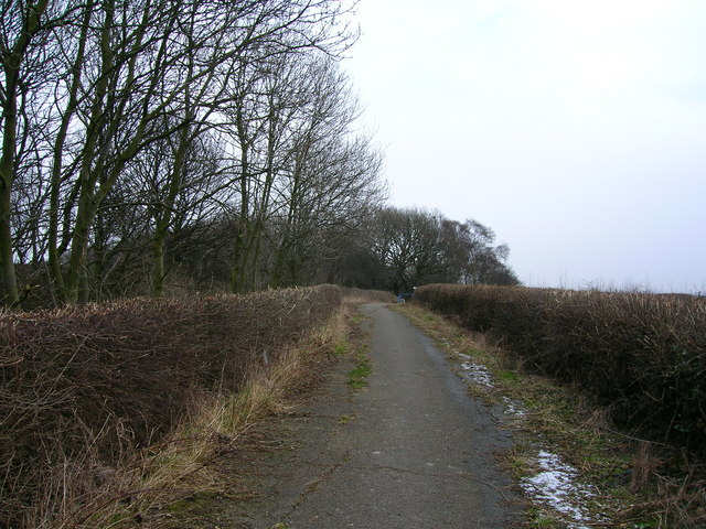 Lane to brickworks and clay pit
