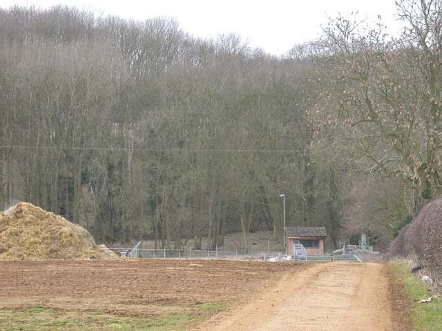Sewage Works in Front of Long Spinney