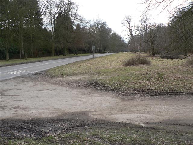 B4506 Through Ashridge Park