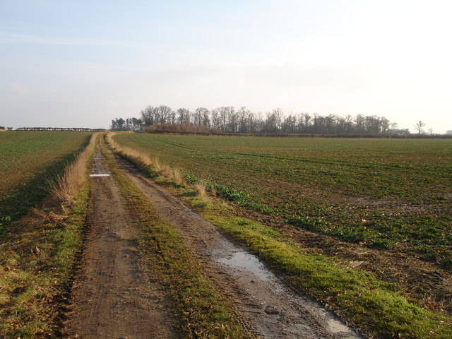 Farm track off the Greatford to Belmesthorpe road