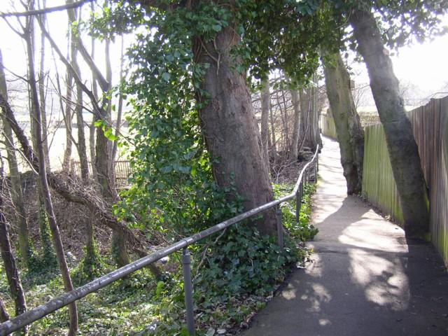 Footpath from Chapel Croft to Ogden Lane, Rastrick (SE139214)