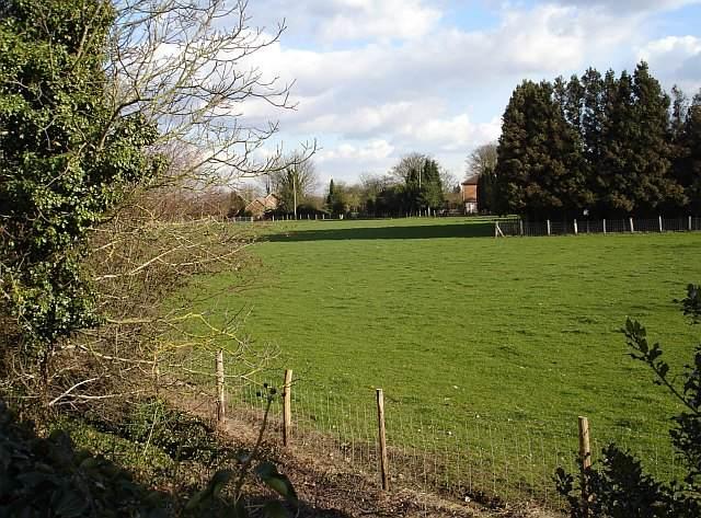 Meadow in Bredgar