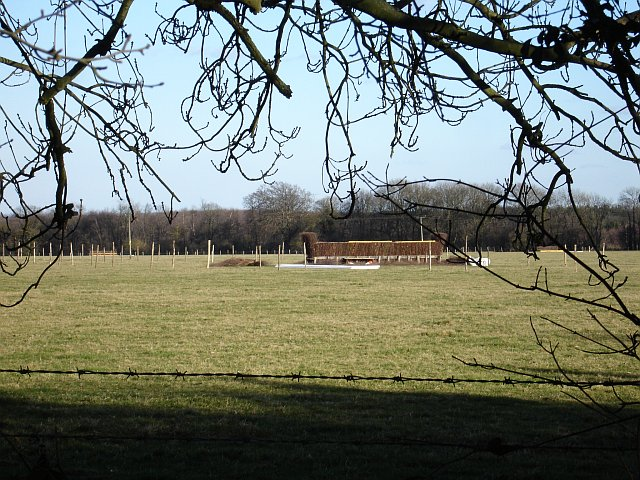 Horse jump east of Binbury Lane