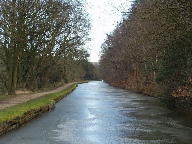 Leeds and Liverpool Canal and Buck Wood, Thackley