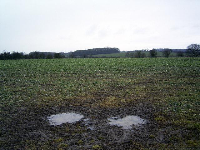Farmland near Market Bosworth