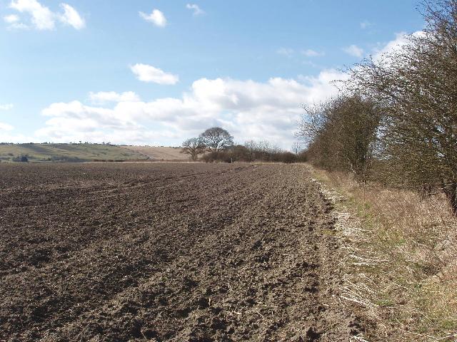 Ploughed field, near Draycot Foliat