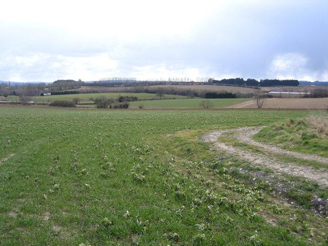 View SE from Carey's Hollow, South Petherton, Somerset