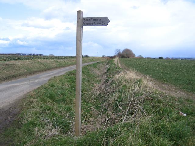 Carey's Hollow lane, South Petherton, Somerset