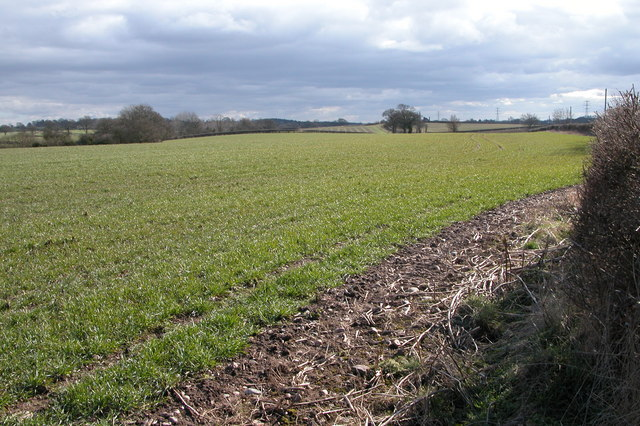 Farmland beside the lane to Southall Farm