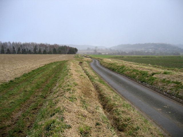 Wigborough to Creedy Bridge road, Somerset