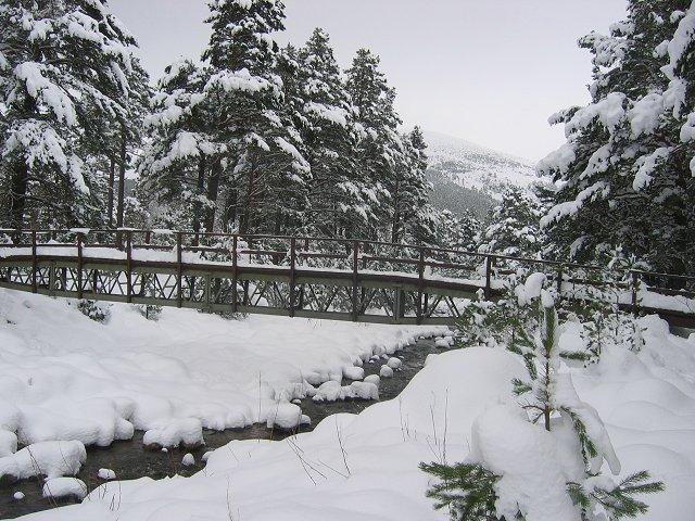 Bridge over the Allt Mor.