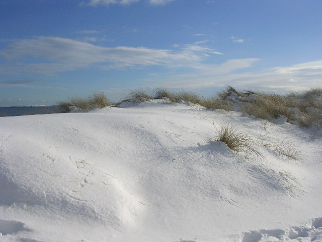 Snow covered dunes at Donmouth