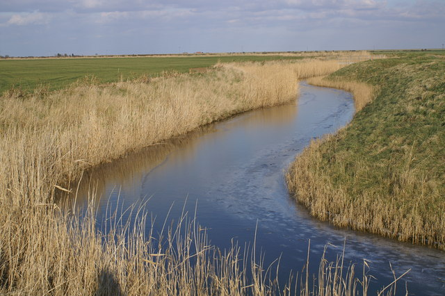Asheldham Brook, the main waterway of these marshes, looking NE