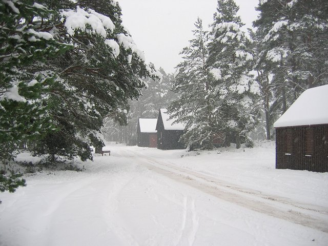 Outbuildings, Forest Lodge