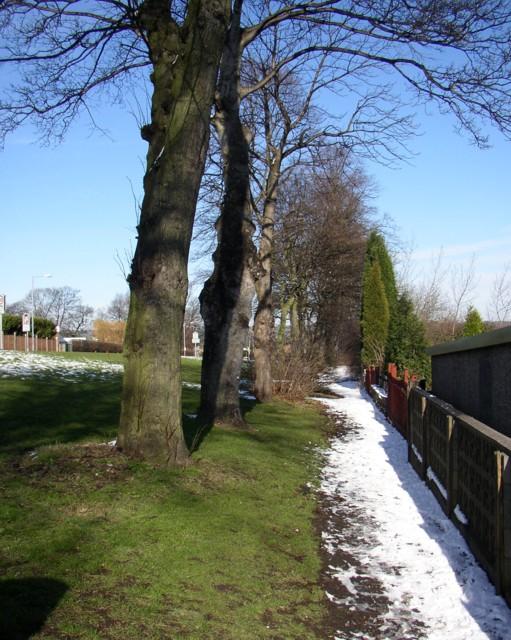Footpath alongside Field Top Road, Rastrick (SE137219)