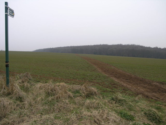 Footpath to Swinston Hill