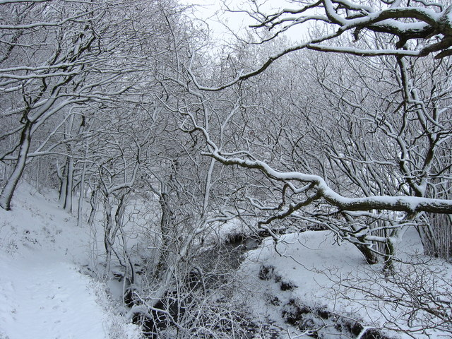 A winter wonderland on the Leeds Country Way , Pudsey.
