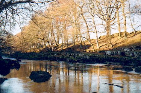 The Tees near Rokeby