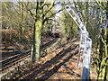 SU9899 : Metropolitan Line railway near Chesham by Nigel Cox