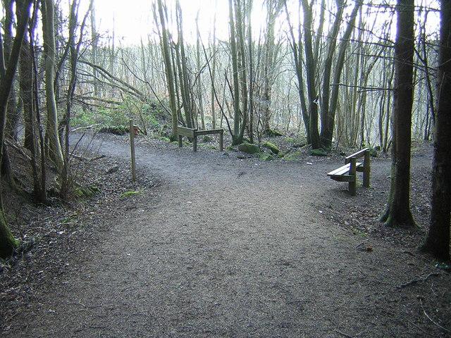 The Green Bridge Trail, Chatelherault Country Park