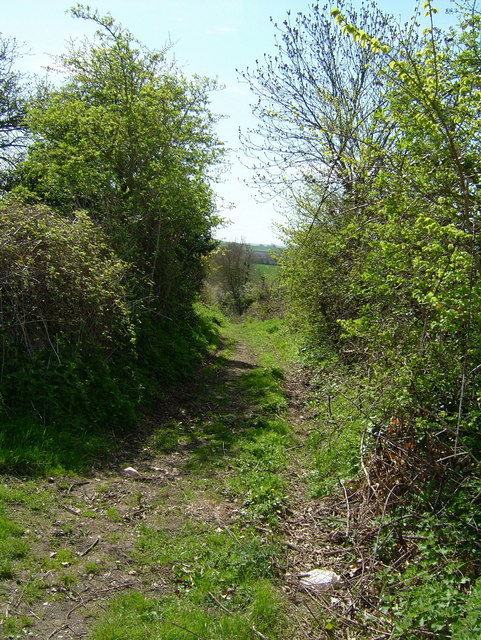 Wyndeats Lane, Stogursey