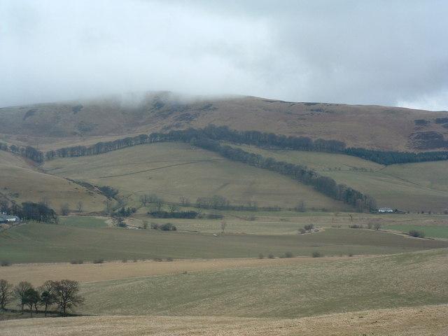 T Wood, Stevenson Hill
