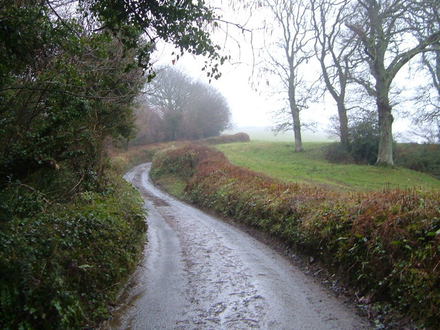 Lane near Swainstone Cross