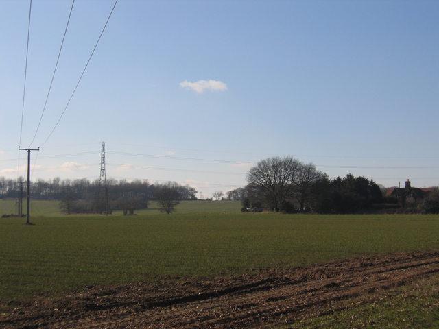 Farmland at Cock Bevington