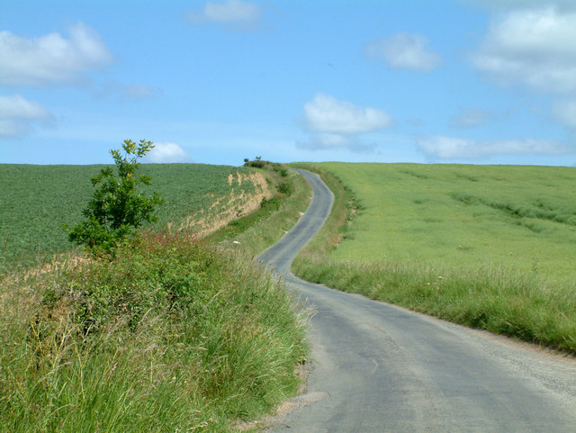 The country lane  between Skewsby and Whenby.