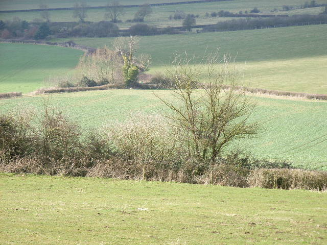 Fields below Ashendon