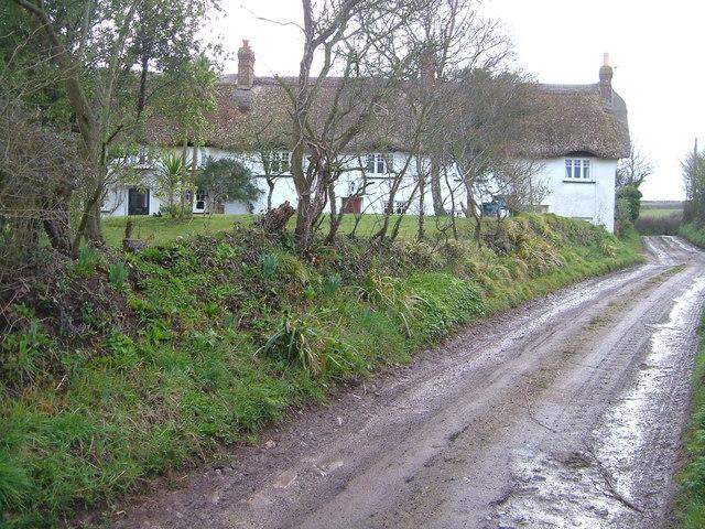 Cottages near Littleham