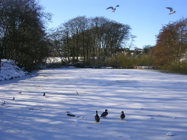 Walker Dam frozen over